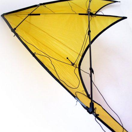 profil de coté du cerf-volant mango