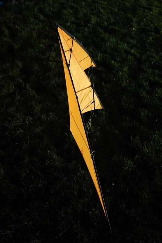 profil du cerf-volant