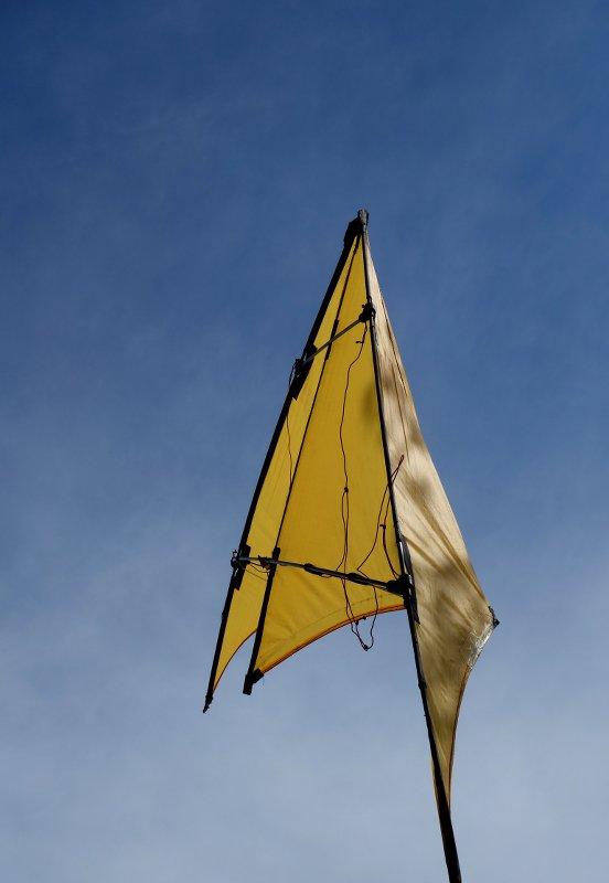 cerf-volant de profil sur ciel bleu