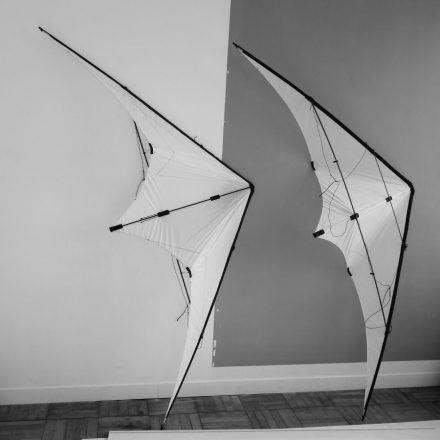 Deux cerfs-volants blancs