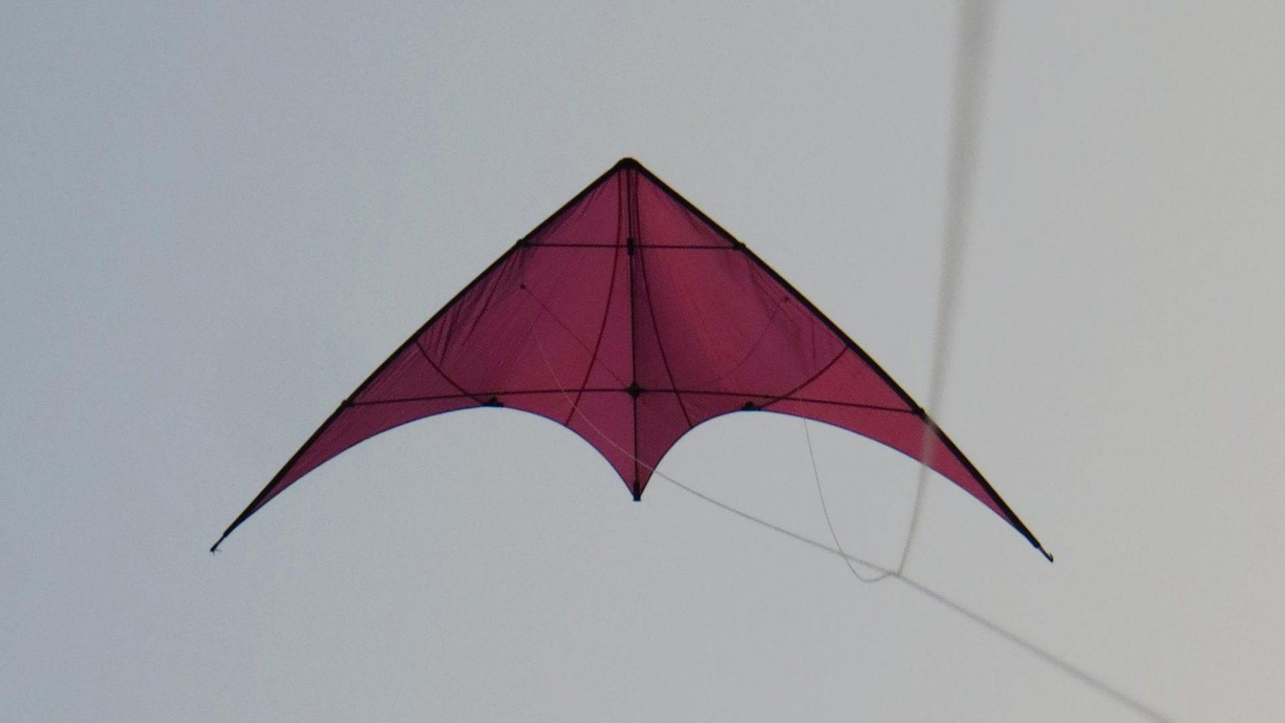 Cerf-volant violet