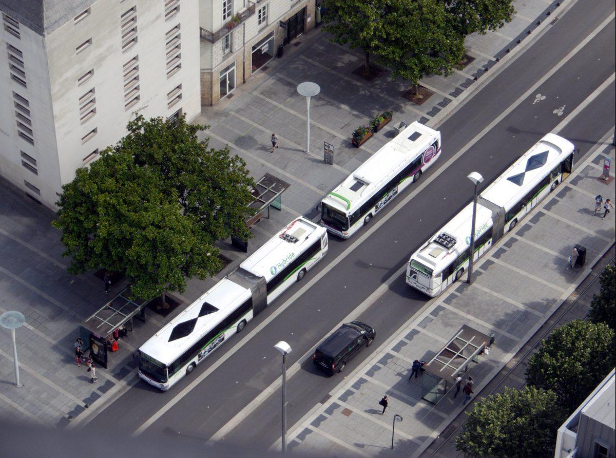 Trois bus vue du ciel, dont deux avec un dessin de poisson sur le toit