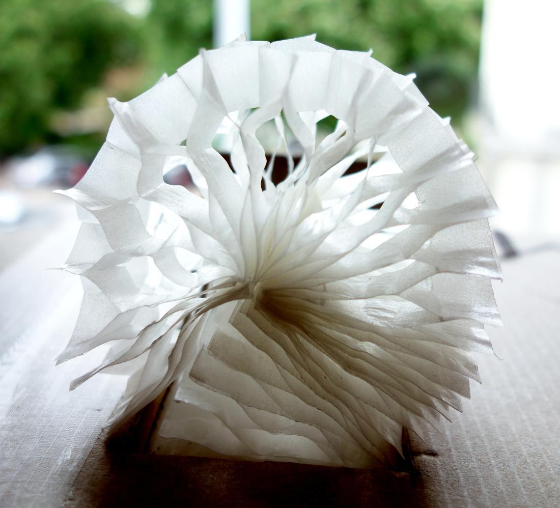 Un escargot stylisé se dessine en transparence