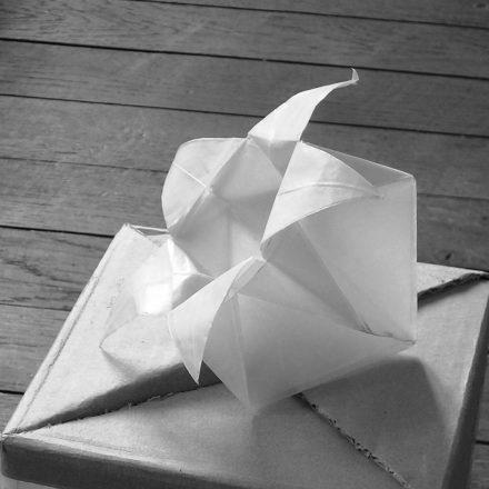 origami boite en étoile à cinq branches
