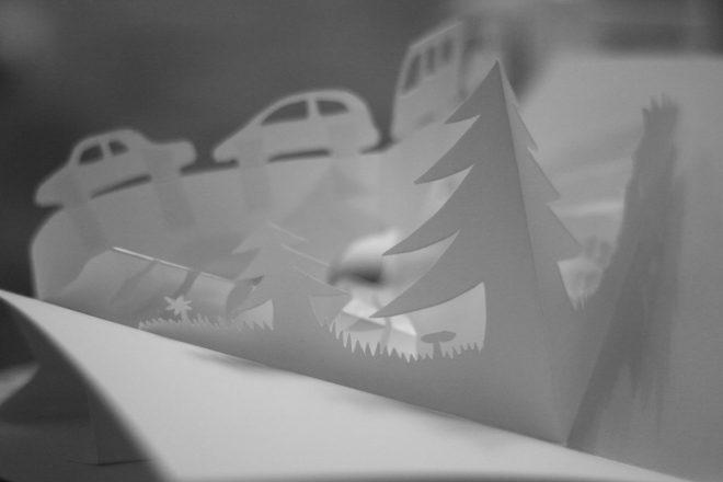 Une rangée d'arbres et une de voitures au loin