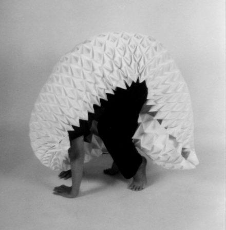 une carapace de tapir de papier plié sur un corps