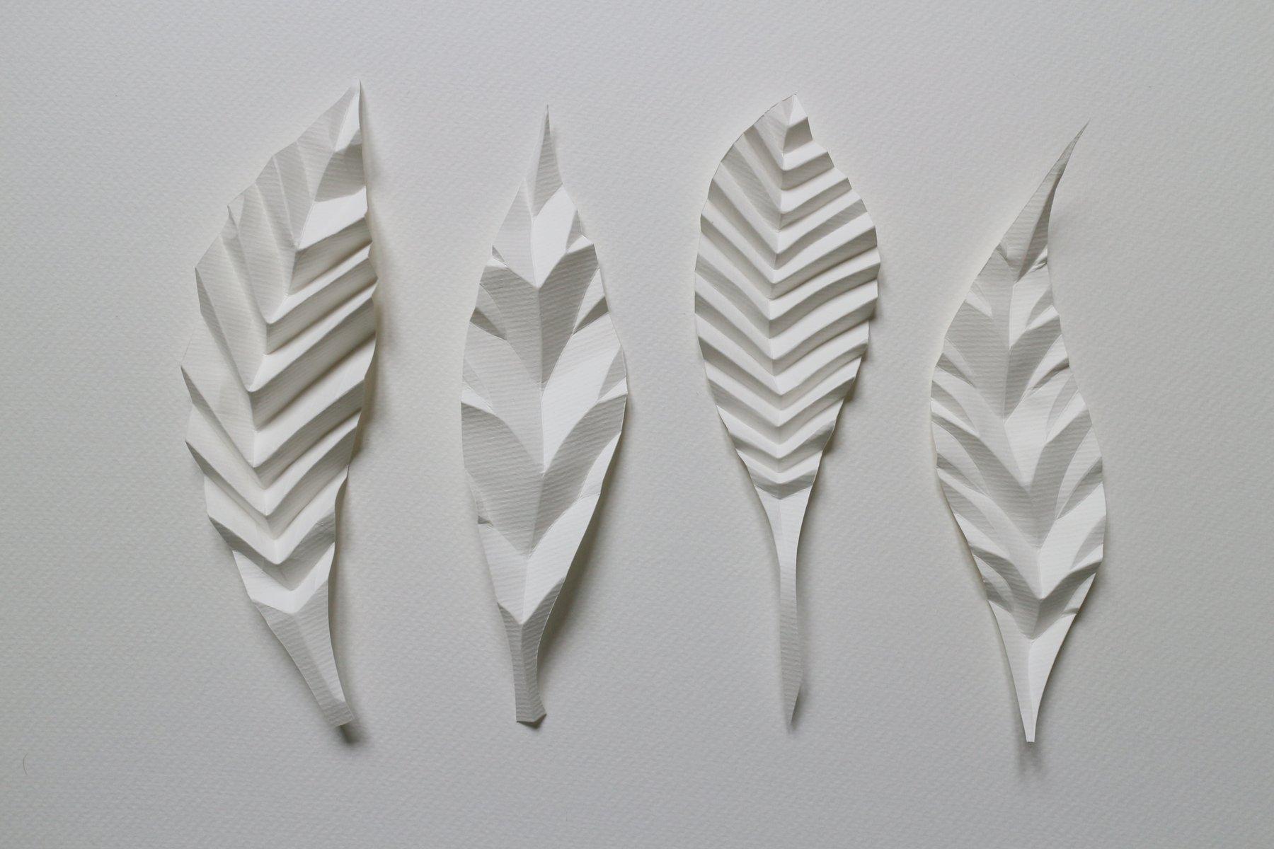 4 feuilles de papiers nervurées