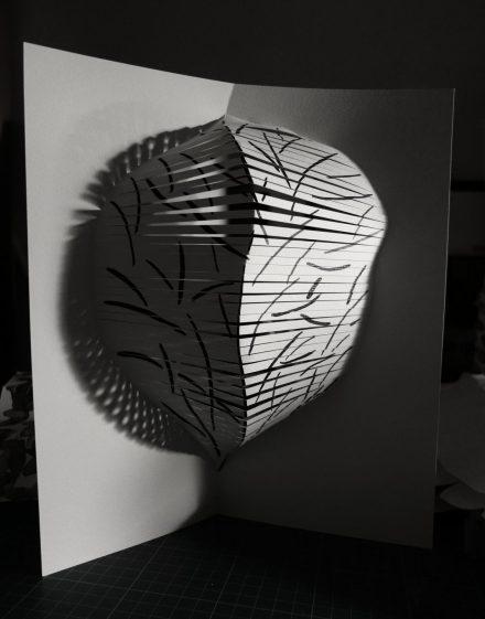 Volume de papier représentant une silhouette d'arbre